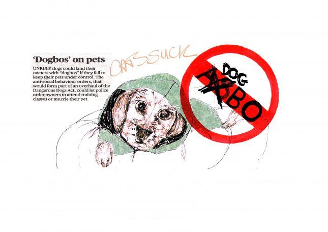 Dogbo Article