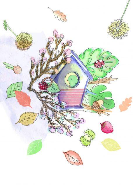 Assignment 2 - colour bird house