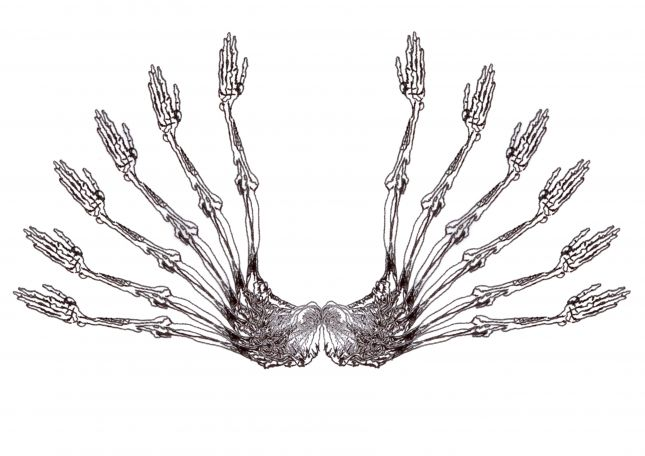 arm wings