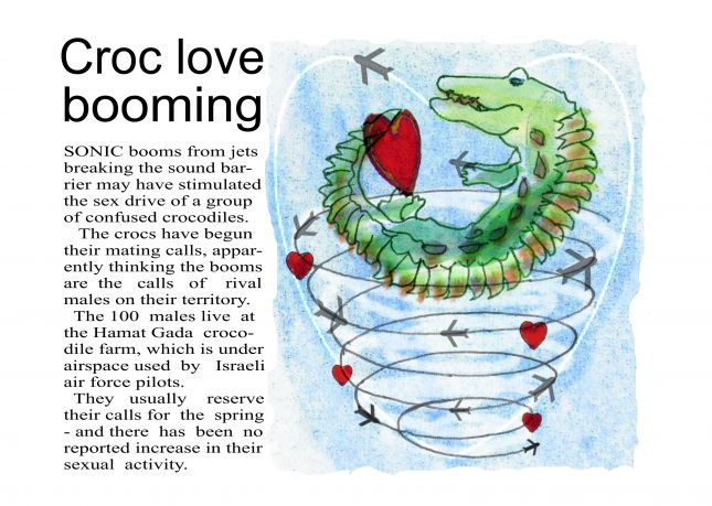 Ass 3- Editorial - Croc love