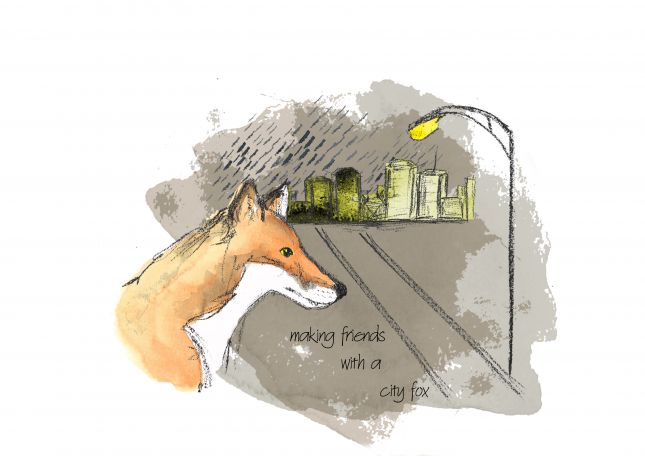 Series Illustration3: City fox