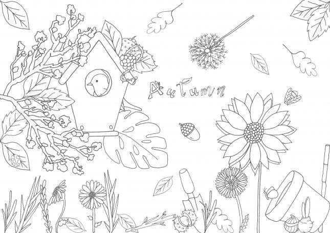 Assignment 1 - garden composition 1