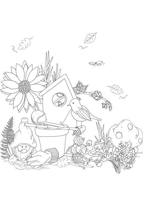 Assignment 1 - garden composition 2