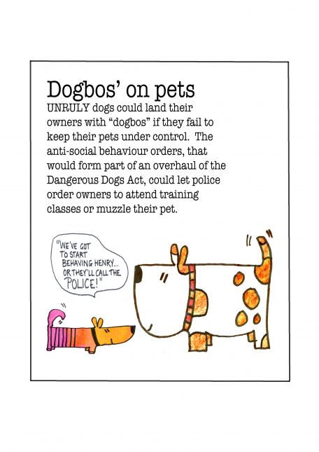 Editorial Assignment - Dogsbo's