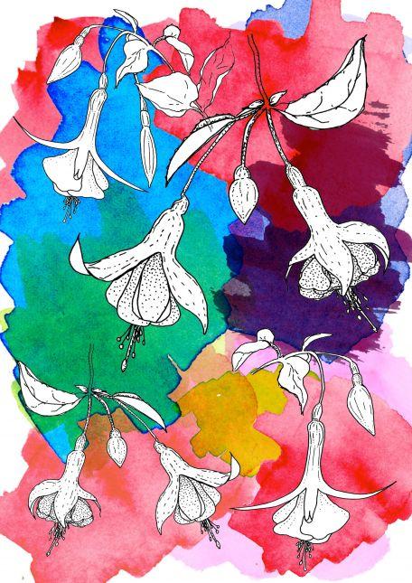 "Assignment 2: Randomly shaped colours.""Colour - Exploration or Explosion"""
