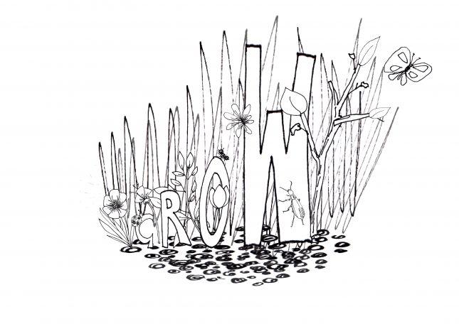 Grow - Week 1