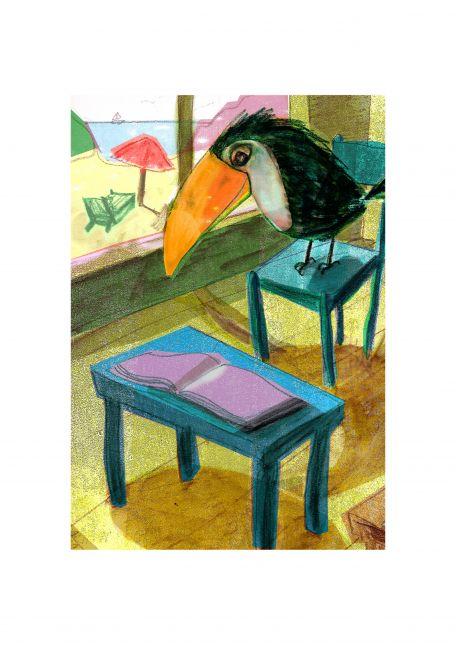 Toucan in class