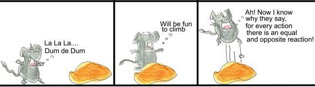Elephant climbing a rock