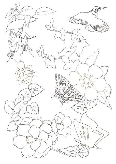 line drawing composition - Secret Garden
