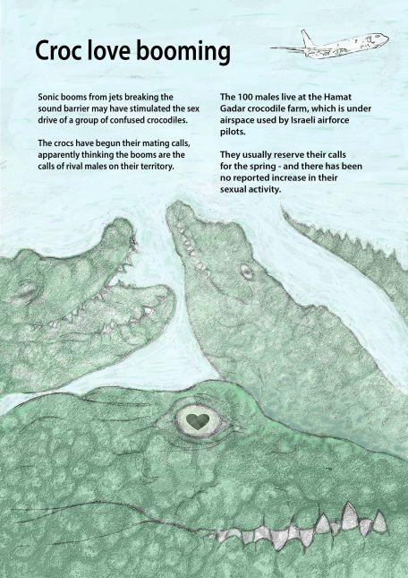 Crocs booming