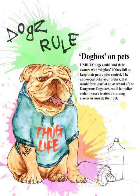 """Week 3 Editorial """"Dogbo'"""