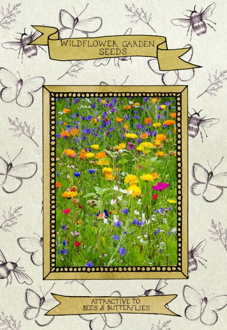 illustration series 3 seed packet