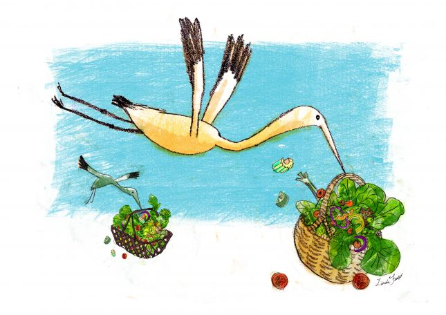 'emergency salad' illustration from my motorhome travel blog