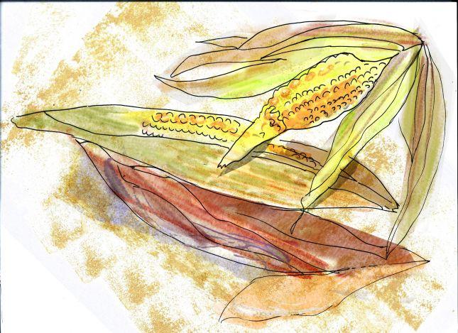 Homework 5: harvest 1