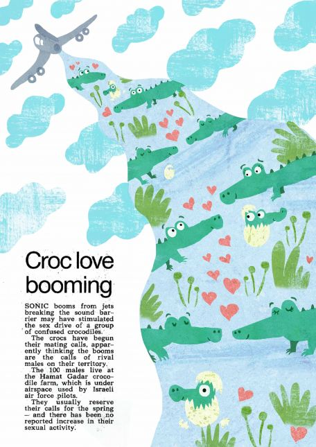 Assignment 3 Croc Love