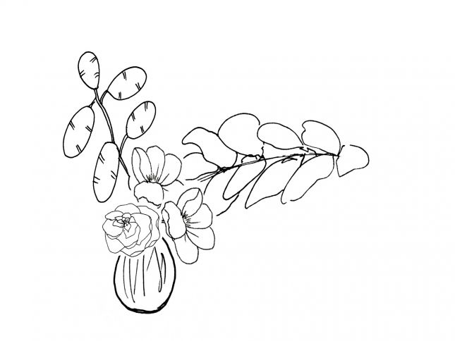 Vase Line Drawing By Vanessa Birley
